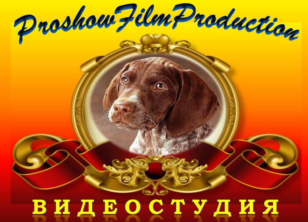 Студия «ProshowFilmProduction»