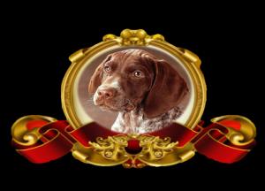 хороший пес